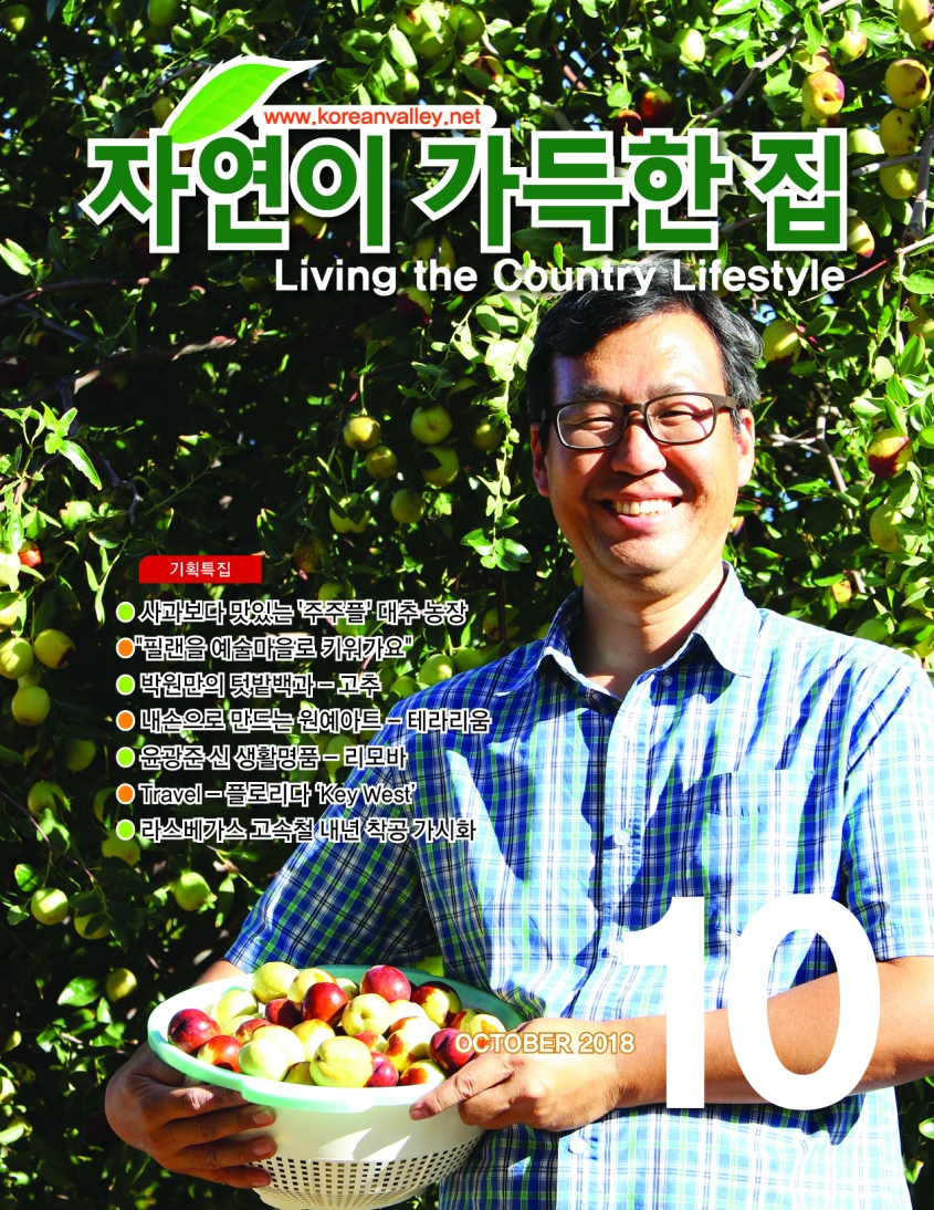 Living-the-Country-Lifestyle-10-cover