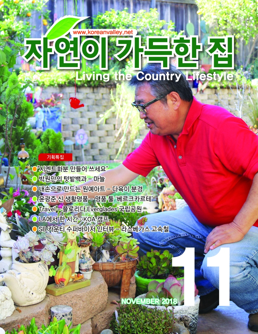 Living the Country Lifestyle-11(Cover) (1)