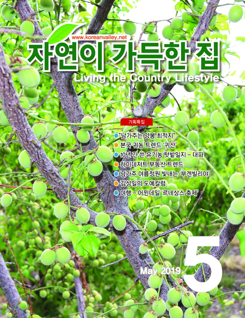 Cover(May)